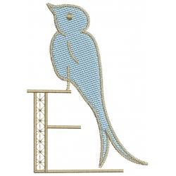 E Alphabet Hirondelle